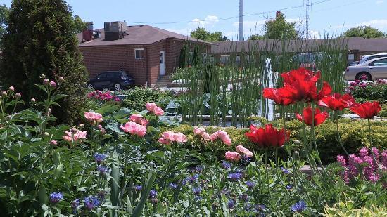 Newmarket Inn : Flower Garden and Fountain