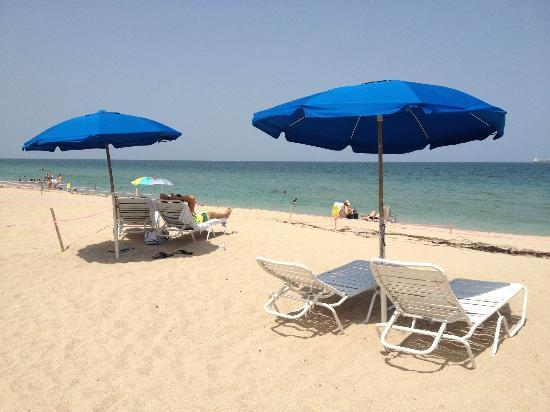 W Fort Lauderdale : Lounge chairs and umbrellas a little pricey but worth it.