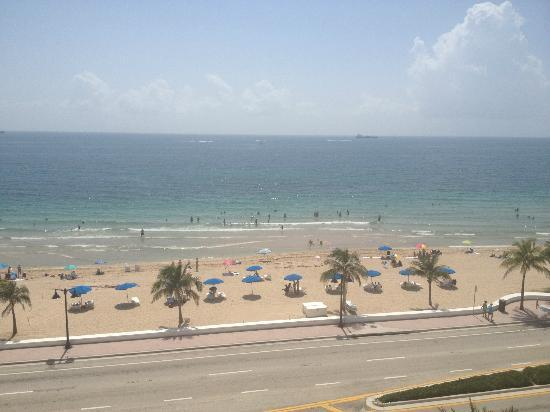 W Fort Lauderdale: View from the pool