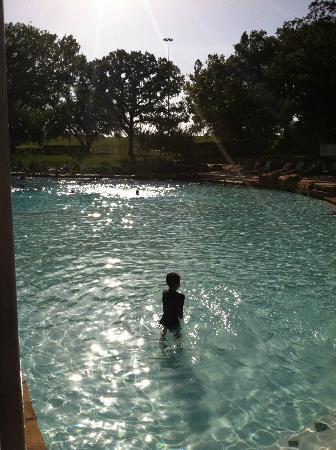 Sheraton Arlington Hotel: Pool
