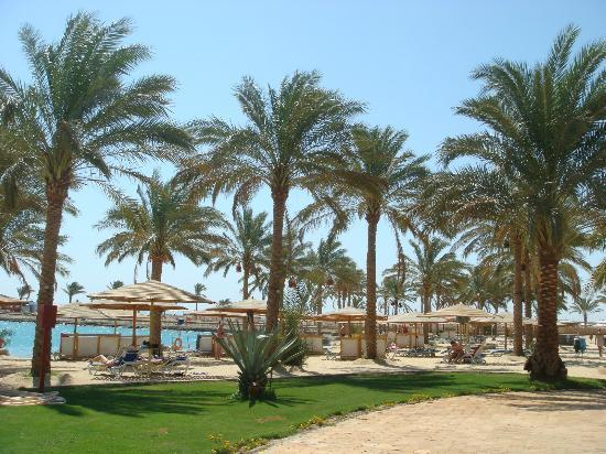 InterContinental Hotel Hurghada: Lovely beach