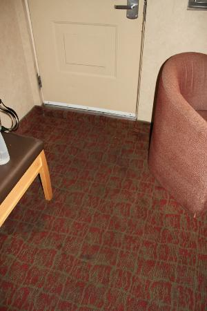 Howard Johnson Express Niagara Falls: Even a dark and dingy room could not hide these stains