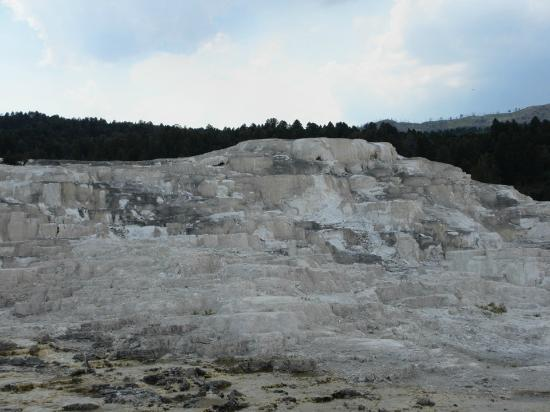 Minerva terrace picture of mammoth hot springs for Minerva terrace yellowstone