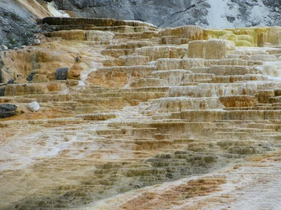 Mammoth Hot Springs: Guide to visit the Terraces of