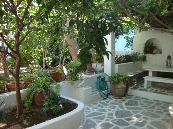 Villa Pinelopi Apartments & Rooms : jardin