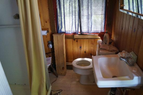 The Birches Resort: Cabin bathroom. Cramped