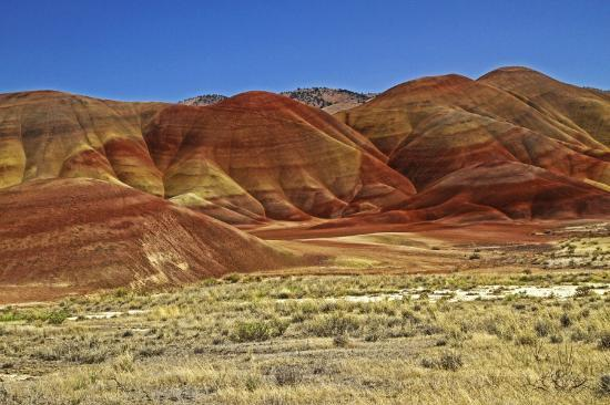 John Day Fossil Beds National Monument: The beauty is everywhere!