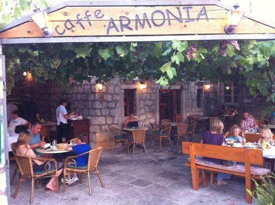 Cafe Armonia: Armonia