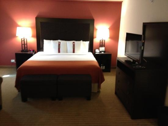 Holiday Inn Itasca (Woodfield Area): suite on 4th floor