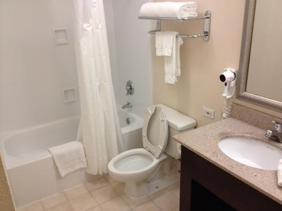 Holiday Inn Itasca (Woodfield Area): bathroom in suite