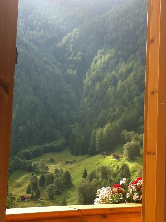Alpine Comfort: View from bedroom window