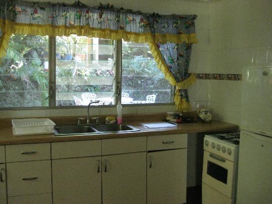 Park Eden Bed & Beakfast: Linda Vista kitchen
