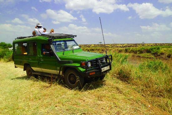 Kenya Wilderness Safaris - Day Tours