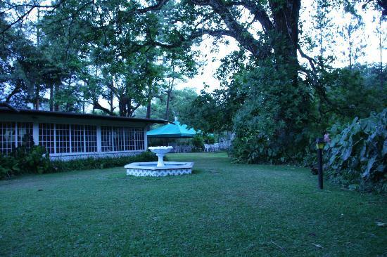 Park Eden Bed & Beakfast: Park Eden grounds