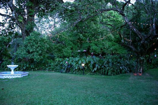 Park Eden Bed & Beakfast: garden on grounds
