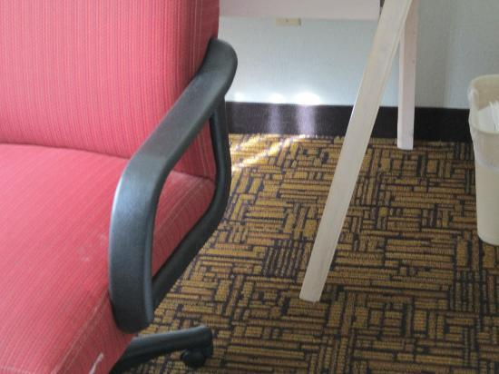 Quality Inn & Suites: Broken table leg, rip on side of chair