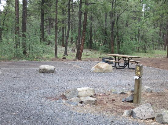 Dogtown Lake Campground: Site B39