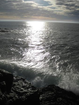 Splash : View