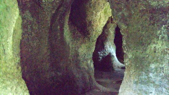 construir gruta jardim : construir gruta jardim:gruta 2 : fotografía de Parque Lage, Río de Janeiro – TripAdvisor
