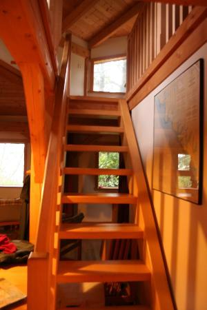 Fortune Cove: Cypress Cabin - stairs up to bedroom lookout