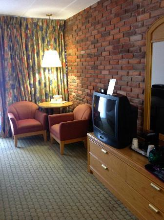 BEST WESTERN Valley Plaza Inn: Room with stain on carpet