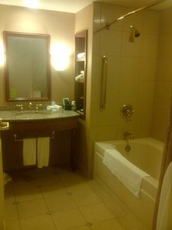 Harrah's Metropolis Casino: Harrahs Metropolis Bathroom 