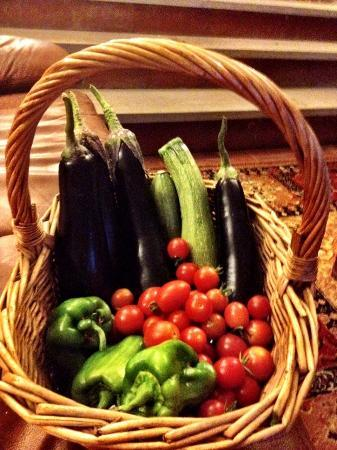 Agriturismo Piaggione di Serravalle: Fresh Veggies from the host's garden.