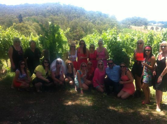 Para Hills West, Australia: At Mt Lofty Ranges Vineyards