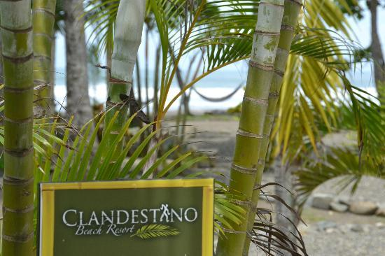 Clandestino Beach Resort: Welcome to paradise.