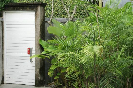 Serene Villas: view next to the door