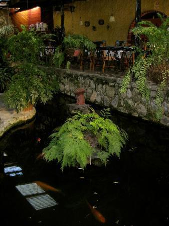 Restaurante Rincon Vallero: koi and turtle pond