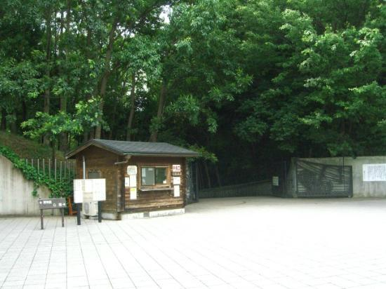 Forest and Park for the 21st Century: 中央口