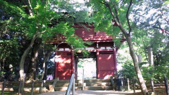 Hondo-ji Temple: 仁王門