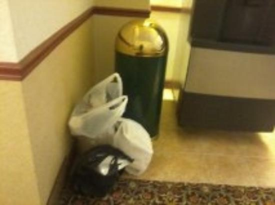 Country Inn & Suites Wolfchase - Memphis: At least 2 day old garbage