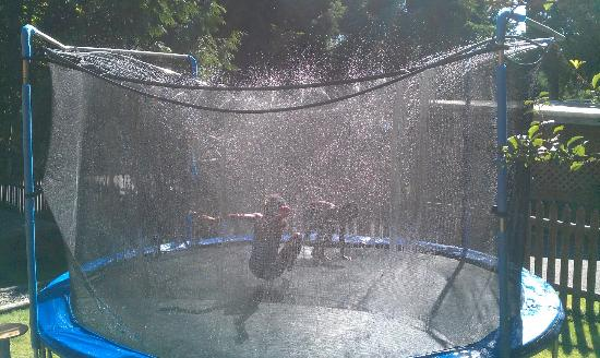 Up The Creek Backpackers B&B: My kids loved this trampoline in the yard, where you can turn sprinklers on!