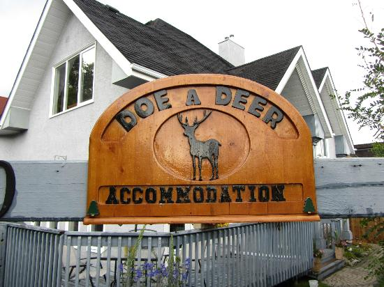 Doe a Deer Accommodation照片