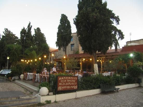 Hatzikelis Sea Food Restaurant : The Hatzikelis fish tavern