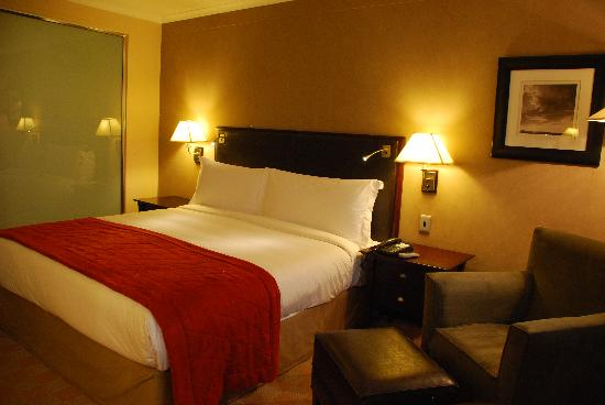Southern Sun O.R Tambo International Hotel: King Size Layout