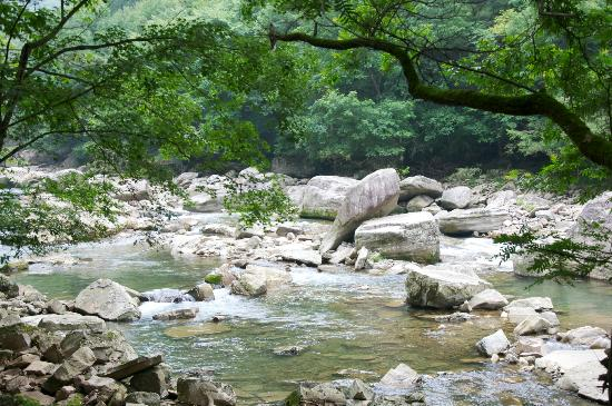 Liping Forest Park : River Stream
