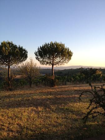Agriturismo Sovigliano : View from Sovigliano