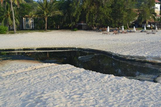 Coral Redang Island Resort: Stinky water at the beach