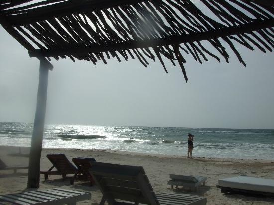 Posada Lamar : playa