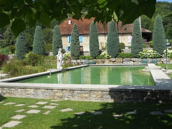 Chateau De Germigney: Piscine naturelle