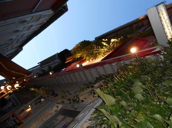 RESTAURANT LE CHAUDRON : Sur la terrasse, une jolie vigne vierge