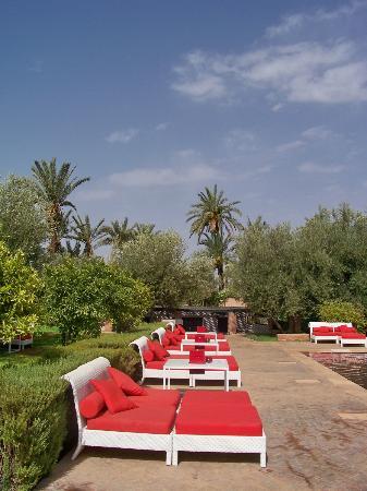 Murano Resort Marrakech: vue du jardin autour piscine rouge