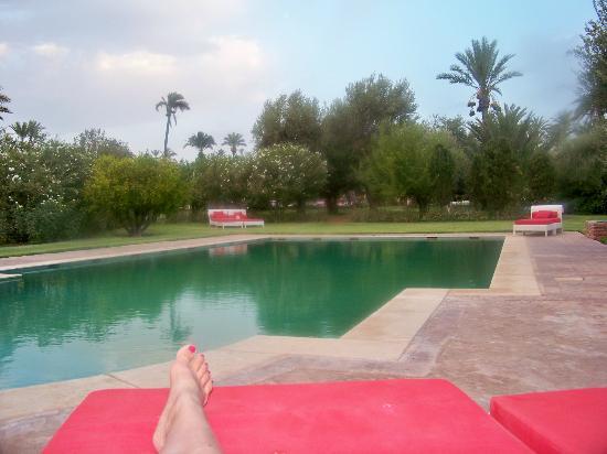 Murano Resort Marrakech: vue du transat sur le piscine privée