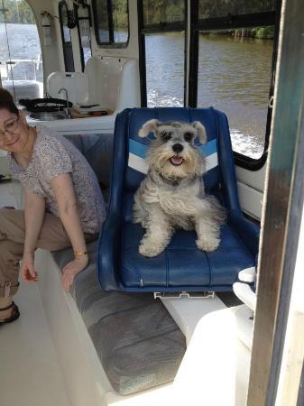 Capt. Gill's River Cruises : Our dog, Einstein
