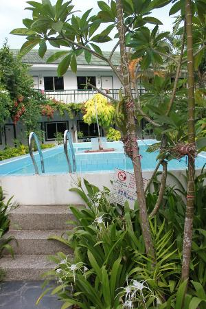 KAMALA BEACH INN: the pool looks way better in this photo than actual