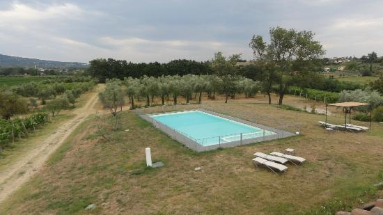 Podere Cantagrillo: Pool