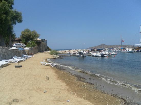 Cimentepe Apart Otel: Beach outside hotel